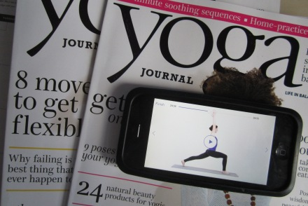 Yoga Studio App Review