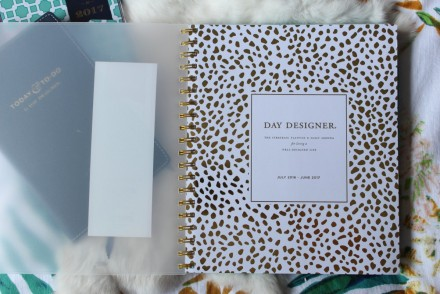 daily day designer for blue sky planners target